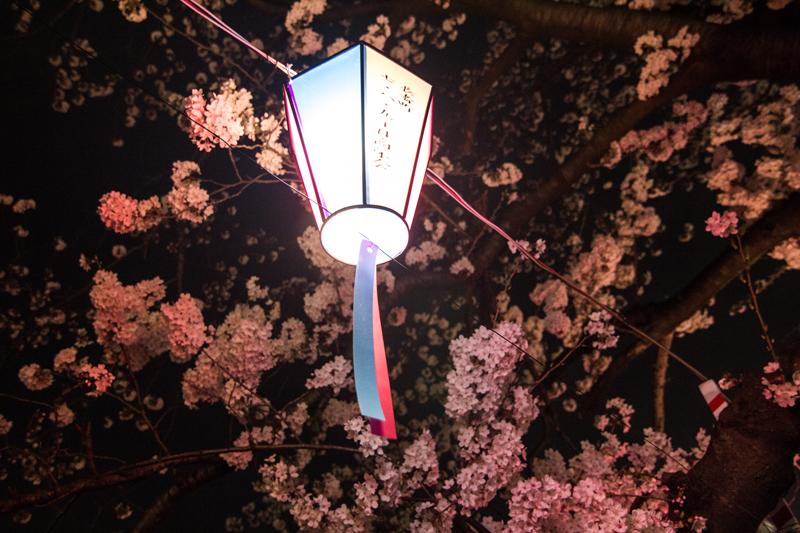 2018-3下_大岡川2-004-2.jpg