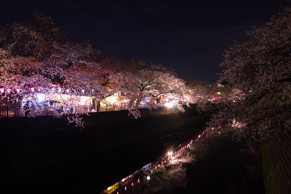 2018-3下_大岡川2-013.jpg