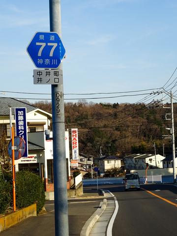 170128 渋沢丘陵他018.jpg