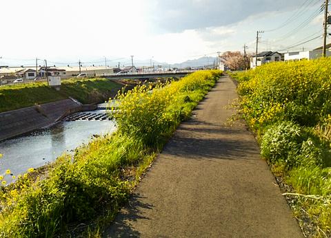 170415yamakita006-1.jpg