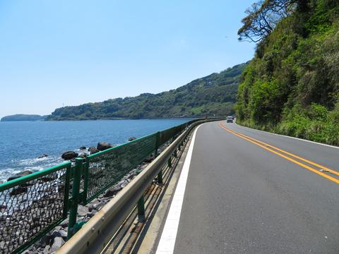 170423 椿ライン~芦ノ湖005.jpg
