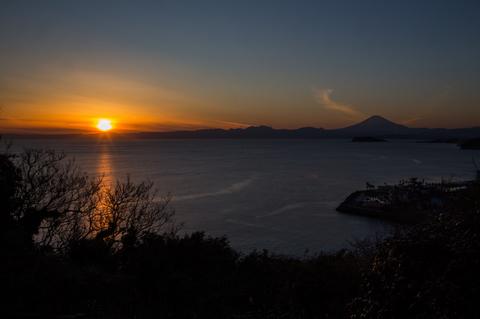 2018-01-14 大崎公園、境川CR009.jpg