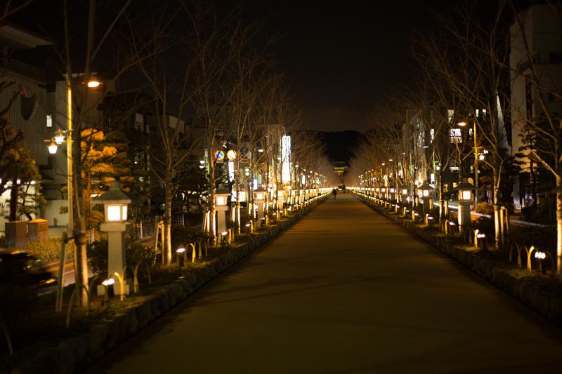2018-02 Kamakurayoru003.jpg