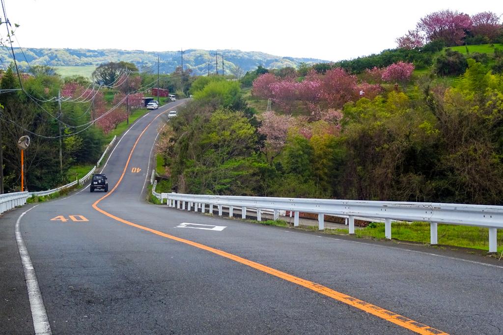 2018-04-08-渋沢丘陵など007-1.jpg