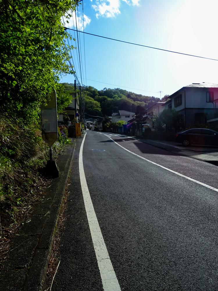 2018-04-08-渋沢丘陵など007-2.jpg