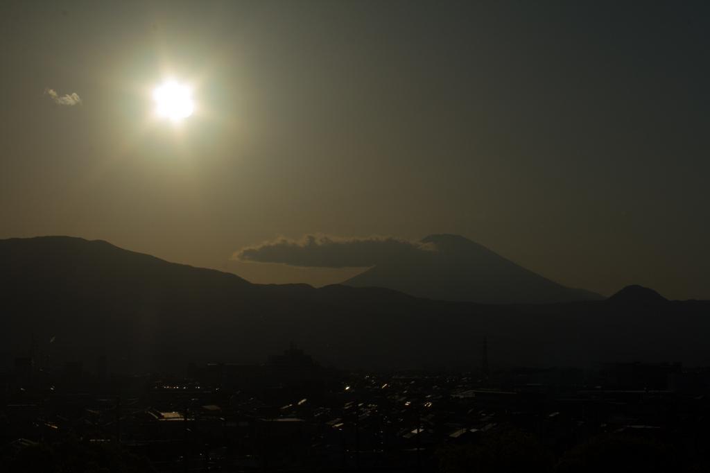 2018-04-08 渋沢丘陵など026.jpg
