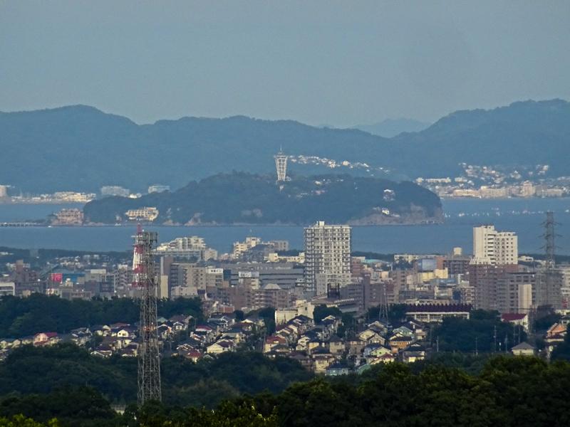 2018-06-17 酒匂川~富士見塚~渋沢丘陵他013.jpg