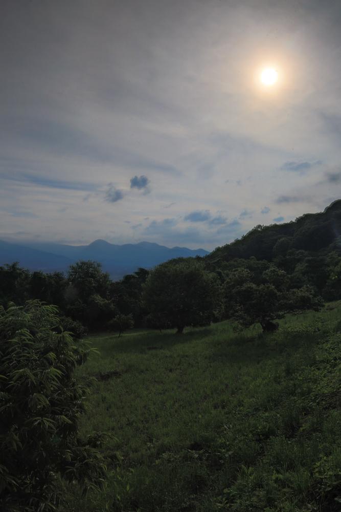 2018-06-17 酒匂川~富士見塚~渋沢丘陵他025.jpg
