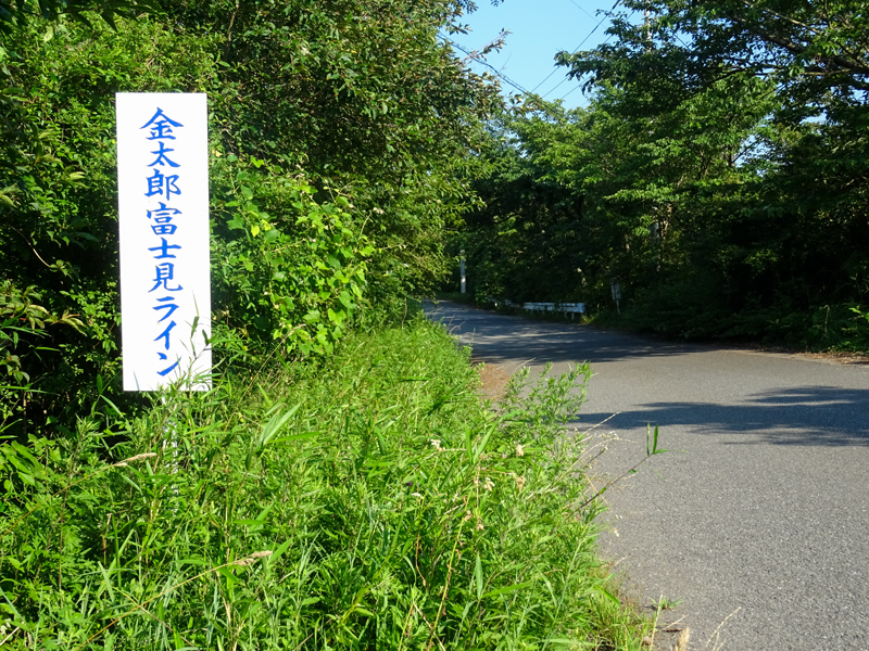 2018-07-15 足柄峠-024.jpg