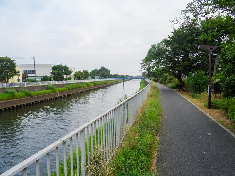 2018-07-22境川ポタ-000.jpg