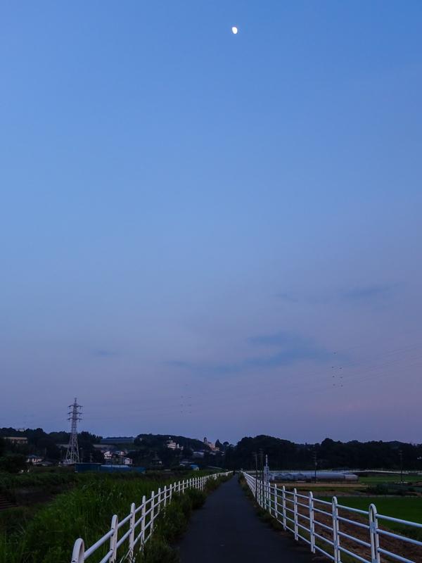 2018-07-22境川ポタ-013.jpg