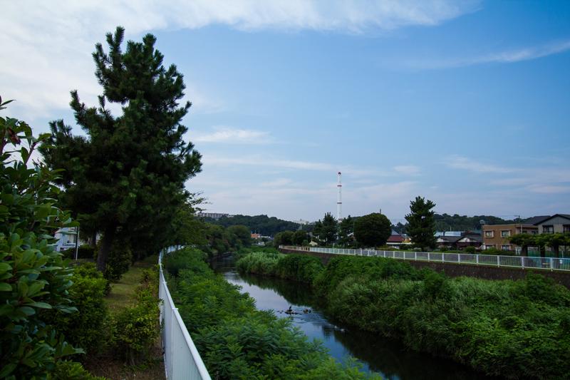 2018-07-22境川ポタ-016.jpg