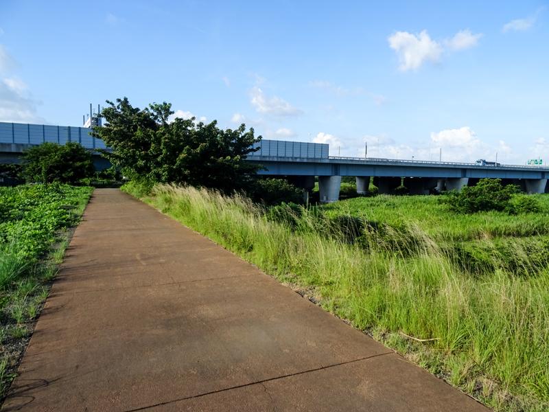 2018-07-29-相模川沿い本厚木ポタ-008.jpg