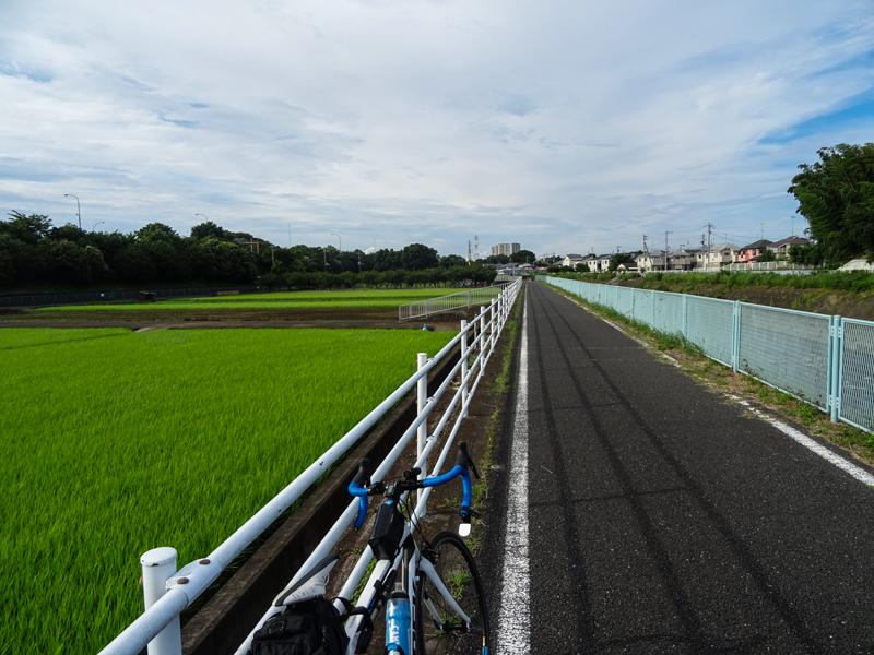 20180708境川_006.jpg