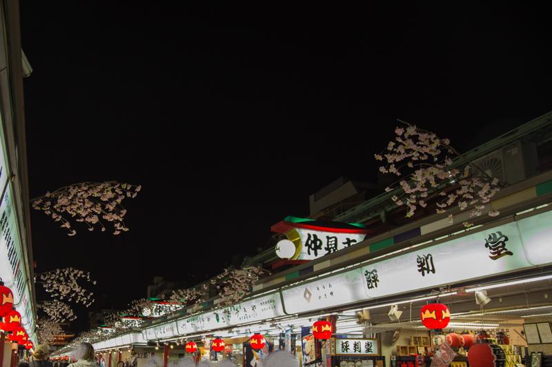 2018 冬の浅草夜景散策002.jpg