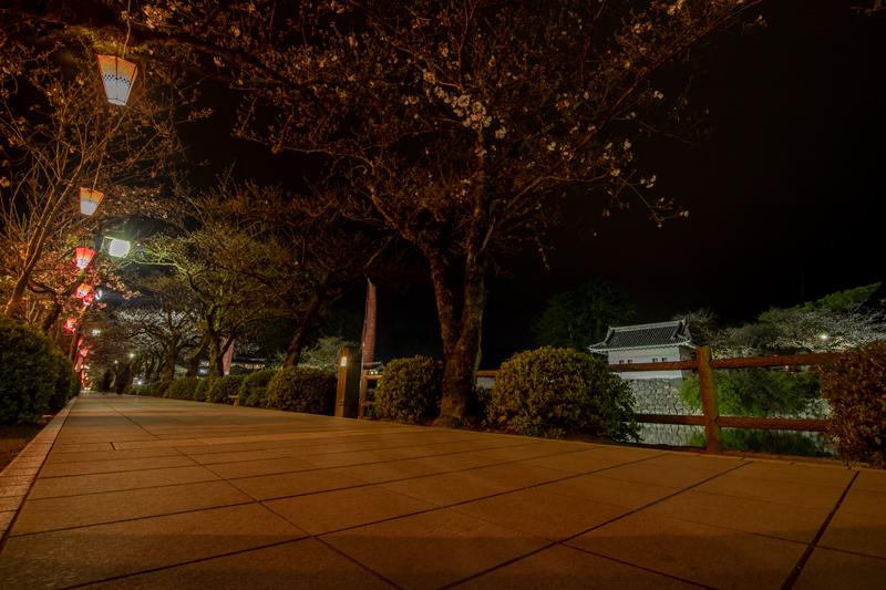 2019-03-odawara-016-1.jpg