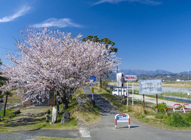 2019-4Naka-yamakita-003.jpg