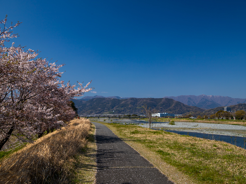 2019-4Naka-yamakita-013.jpg