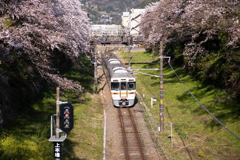 2019-4Naka-yamakita-015.jpg